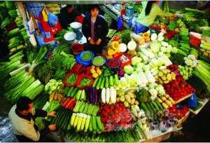 入冬以来天气晴朗 山东蔬菜价格稳中有落